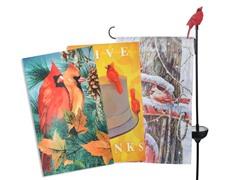 Cardinal Flag and Light Combo