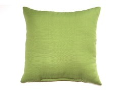 16-Inch Throw Pillow, 2-Pack - Kiwi