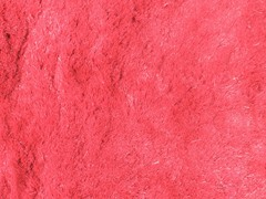 Pink Silky Shag Plain (2 Sizes)