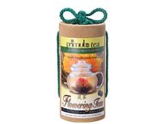 Primula Flowering Green Jasmine Tea 12pk