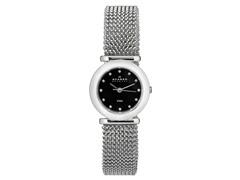 Skagen SS Watch