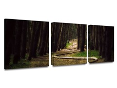 Forest Trail by Revolver Ocelot -2 Sizes