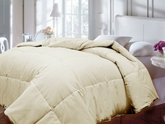 Down Alternative Comforter-Ivory-Full/Queen