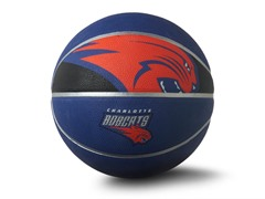 Charlotte Bobcats Courtside Full Size