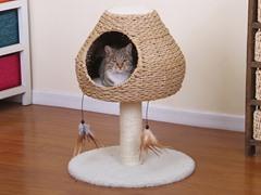 """24"""" Paper Rope Cat Condo"""