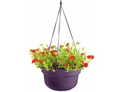Hanging Basket, 10-Inch, Exotica