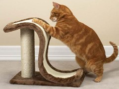 Meow Town™ Scratch N Slide Scratching Post