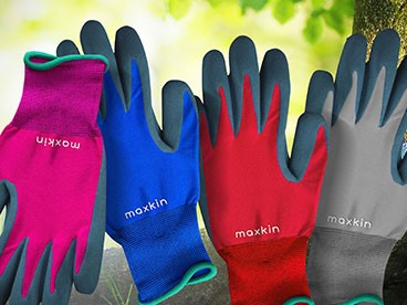 Maxkin Gloves 6-Packs