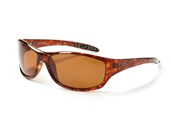 Fabricator - Tort/Brown Polarized