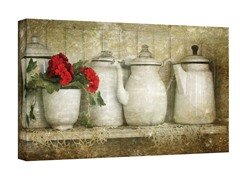Flower with Pots Wrapped Canvas(3 Sizes)