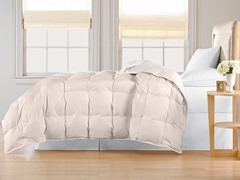 Down Alternative Comforter-Ivory-3 Sizes