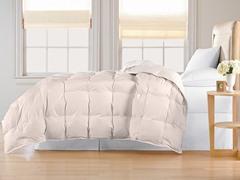 Down Alternative Comforter-Ivory-3 Sizes