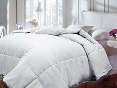 Down Alternative Comforter-White-2 Sizes