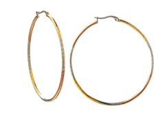 Stainless Steel Polish 3-Tone Diamond Cut Round Hoop Earrings