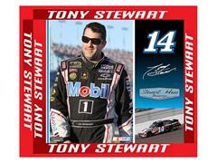 """Tony Stewart 9"""" x 11"""""""