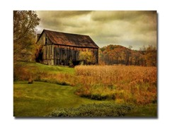 Old Barn on Stormy Afternoon by Lois Bryan