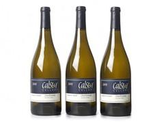 Calstar Sangiacomo Sonoma Chardonnay (3)