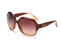 Brown CL2227 Sunglasses