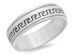 Stainless Steel Spinner Ring w/ Accent
