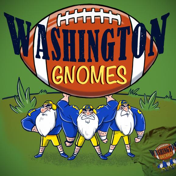 Washington Gnomes