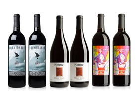 6-Pk. Outlier Mixed Red Wine