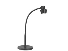 Abbott Adjustable Desk Lamp