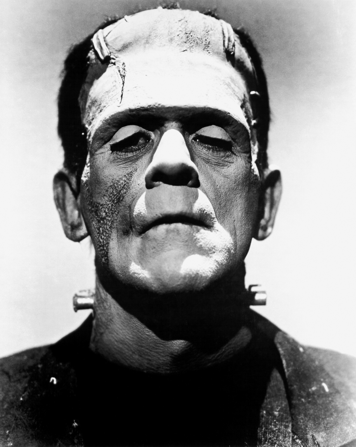 The Debunker: Was the Monster in Mary Shelley's Frankenstein Built from Corpses? at https://www.woot.com/blog/post/the-debunker-was-the-monster-in-mary-shelleys-frankenstein-built-from-corpses