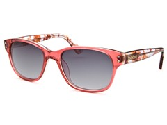 Charismatic Wayfarer Sunglasses