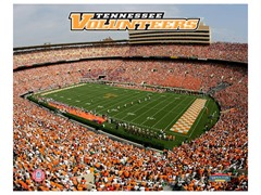 "Tennessee Volunteers Stadium 8"" x 10"""