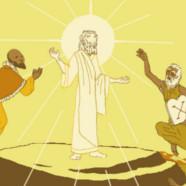 Yellow/Brown Transfiguration