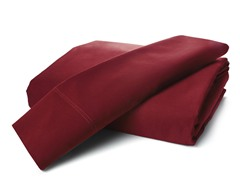 800TC Egyptian Cotton-Cabernet-2 Sizes