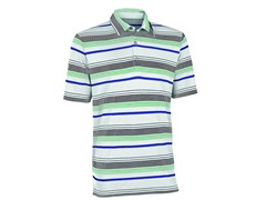 Ashworth Performance Golf Shirt- Grn (L)