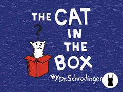 The Cat in the Box Tri-Blend Tank