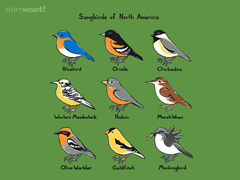 Songbirds of North America Poster