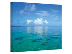 Lagoon and Reef by George Zucconi (3 Sizes)