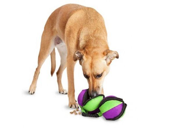 Rip N Tug Dog Toy