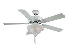 Atlantic Fan, White