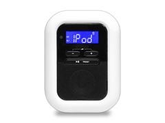 30-pin iPod/iPhone Dock Clock Radio