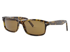 Women's Waldo Polarized  - Brown