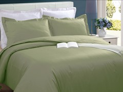 Microfiber Duvet Cover Set-Sage-2 Sizes