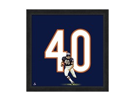 "NFL Chicago Bears Gale Sayers 20"" x 20"" Player Uniframe"
