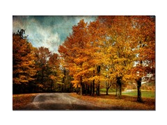 Autumn Scene by Lois Bryan