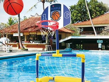 Pool Floating Goal and Basketball Hoop