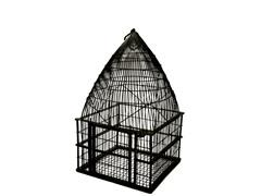 Square Birdcage