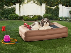 Outdoor Inflatable Pet Bed