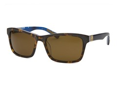 Men's Falmouth Sunglasses