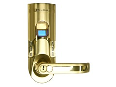 Gold Fingerprint Door Lock Right Handle