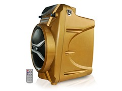 300W Bluetooth PA System (4 Colors)