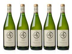 Urraca Argentinian Chardonnay (5)