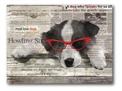 Cool Pup I